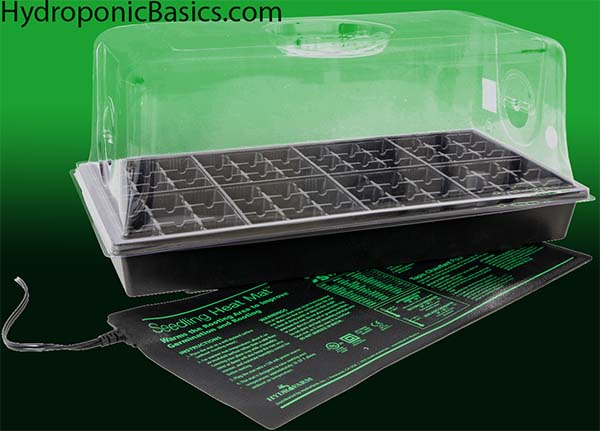 Seedling Tray and Dome
